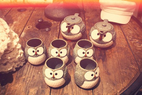 owl-family-cup